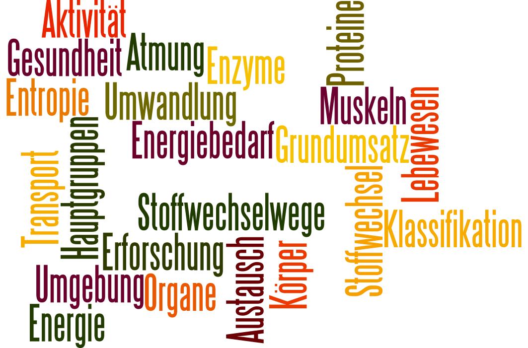 healthy Archive - Dinkelflocke(n)